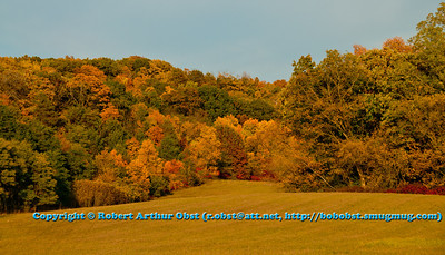 Hiker's and trail runner's often enjoy blue skies and brilliant colors during autumn within Indian Lake County Park (USA WI Cross Plains; Obst FAV Photos 2012 Nikon D300s Image 3639)